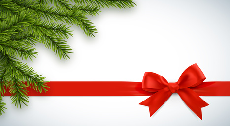 Ruban cadeau et branches de sapin vectorielles 1